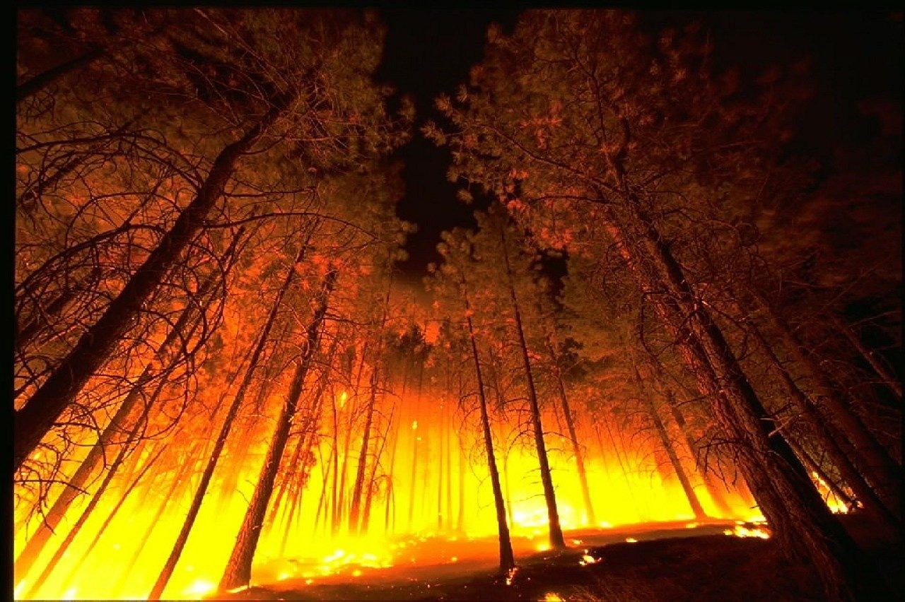 incendios 2020 España
